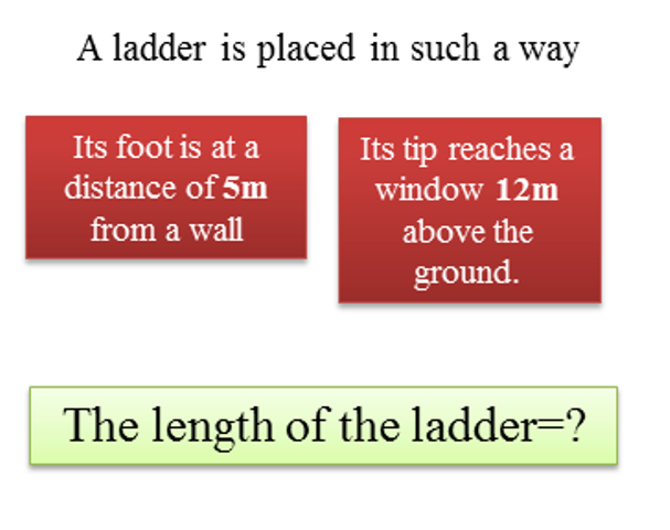 The length of the ladder